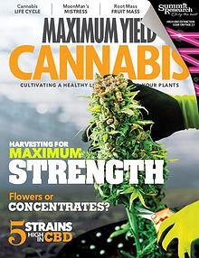 Maximum Yield Cannabis USA