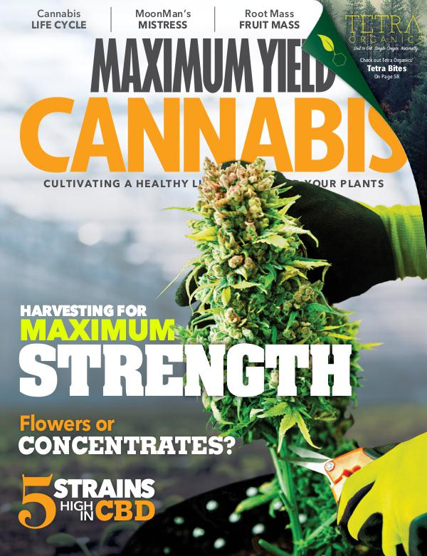 Maximum Yield Cannabis Canada 2018 August/September