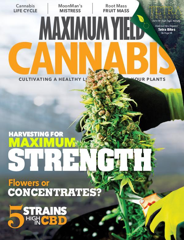 Maximum Yield Cannabis Canada 2018 August/September