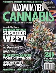 Maximum Yield Cannabis Canada