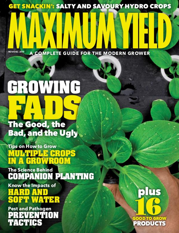 Maximum Yield Australia/New Zealand November/December 2019