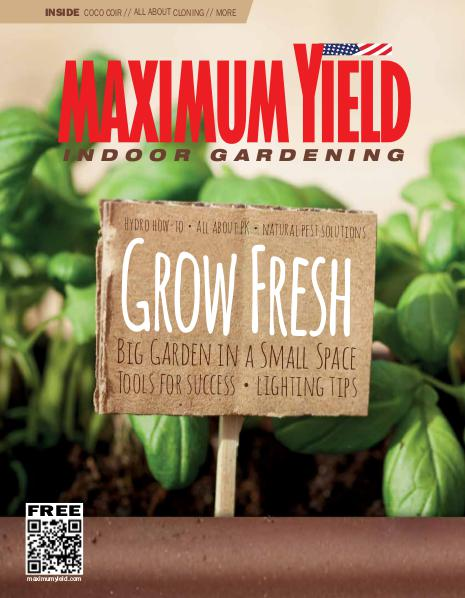 Maximum Yield USA August 2016