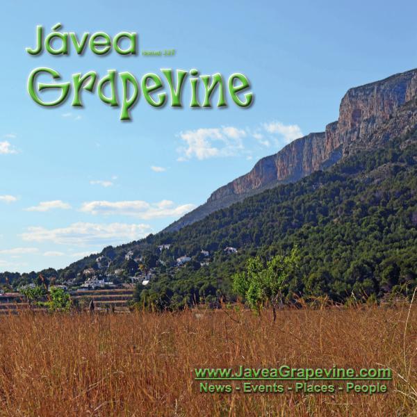Javea Grapevine 337