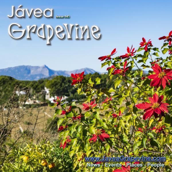 Javea Grapevine 343