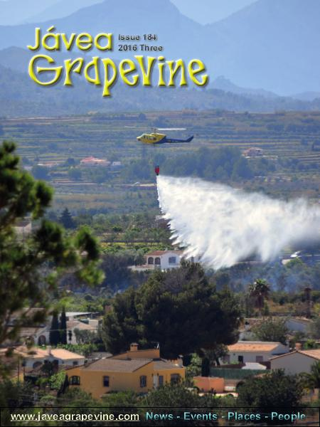 Javea Grapevine 184 2016 Three