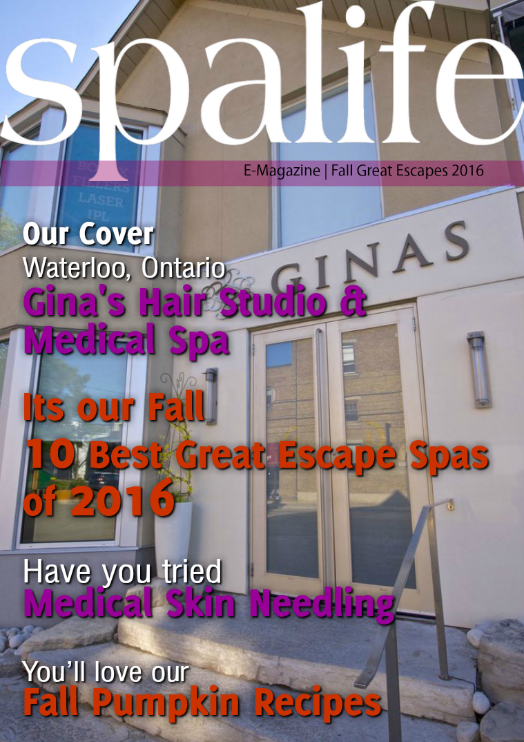 Issue 3 Vol. 16 Fall Great Escapes 2016