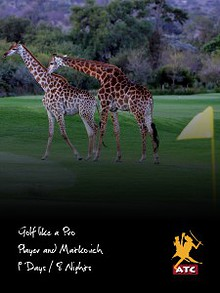 Golf like a Pro: Player and Matkovich