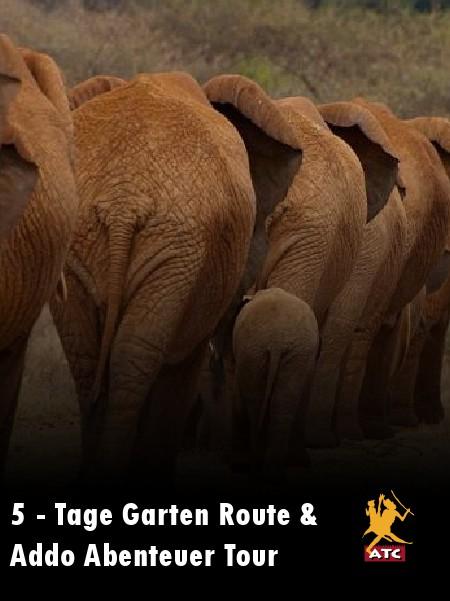 5 - Tage Garten Route & Addo Abenteuer Tour Juni 2014