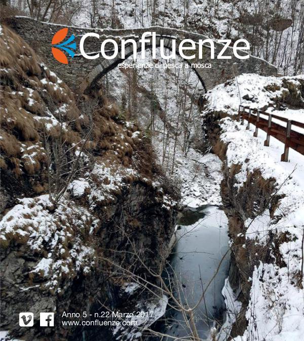 Confluenze Magazine Nt. 17 Numero 22 2017