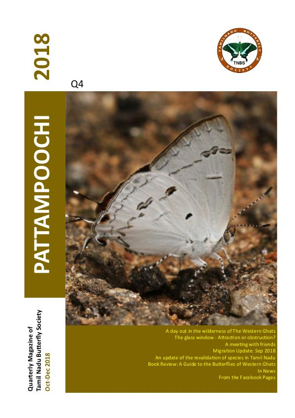 Pattampoochi Butterfly Magazine - Wings 2 Veins 4
