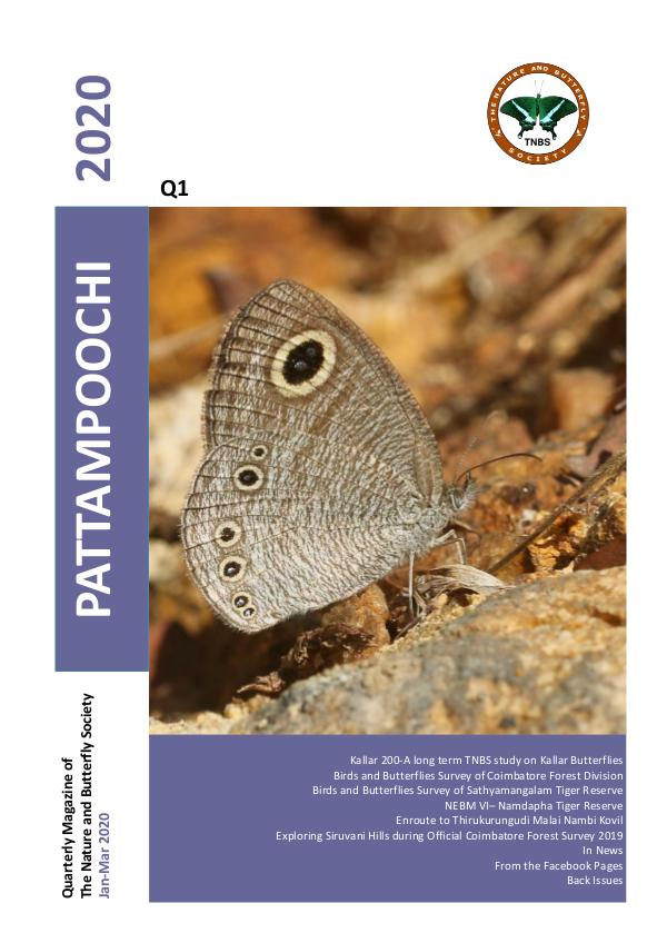 Pattampoochi - Butterfly Magazine Wings 4 Veins 1 - 2020