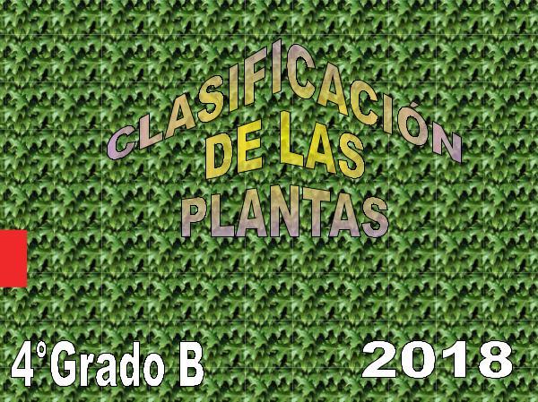 CLASIFICACIÓN DE PLANTAS 4B