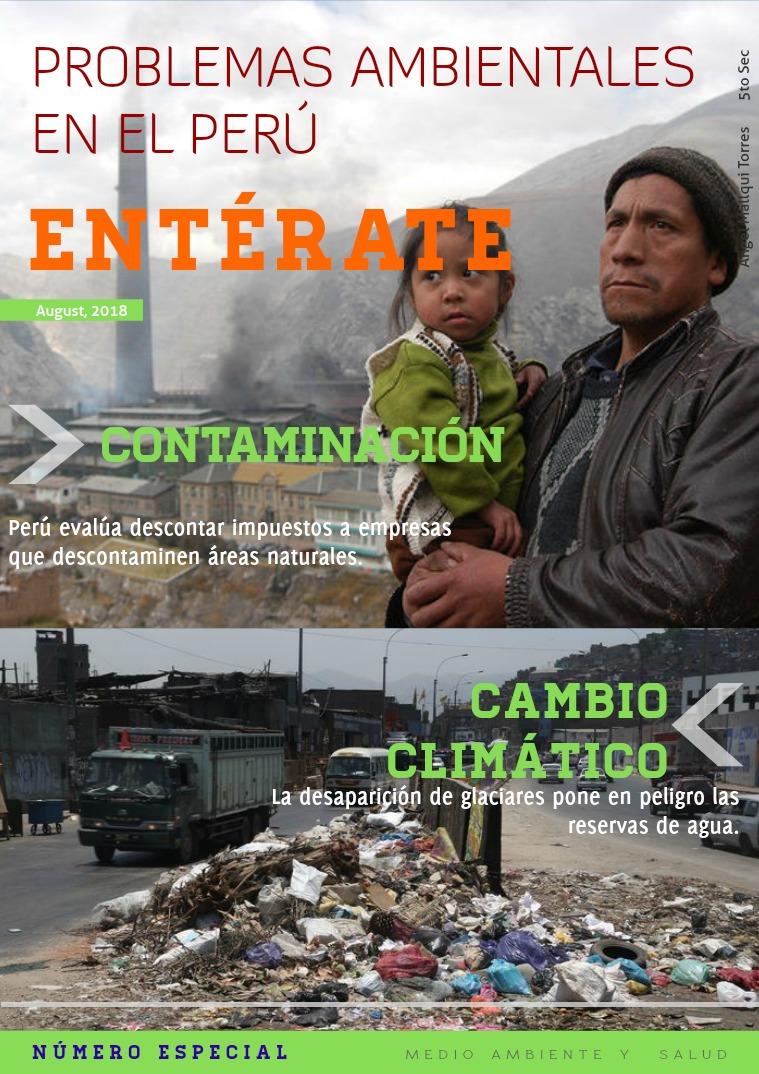 PROBLEMAS AMBIENTALES EN EL PERÚ PROBLEMAS AMBIENTALES EN EL PERÚ
