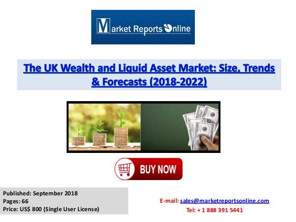UK Wealth and Liquid Asset Market 2018-2022 Forecast Sept 2018