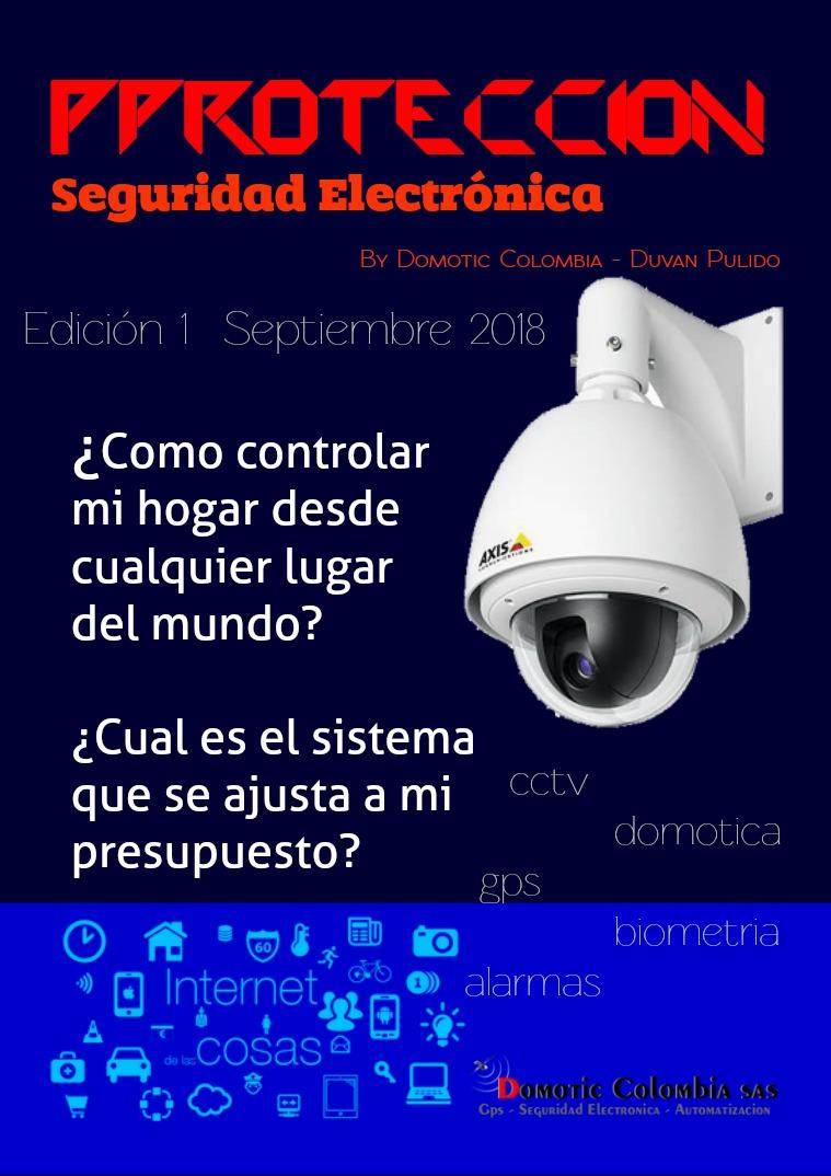 Seguridad Electronica Edición 1