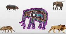 Learn names and sounds of wild animals with colors soccer balls