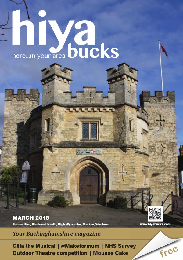 hiya bucks in Bourne End, Flackwell Heath, Marlow, Wycombe, Wooburn March 2018
