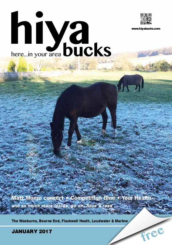 hiya bucks in Bourne End, Flackwell Heath, Marlow, Wycombe, Wooburn January 2017