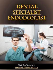 Dental Specialist Endodontist   dentalwebdmd.com