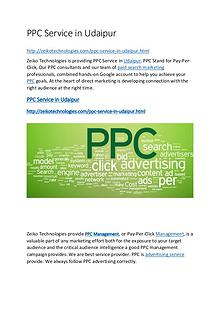 PPC Service in Udaipur