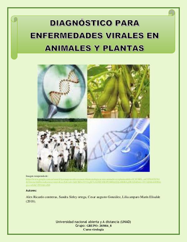 cartilla diagnostico  de enfermedades virales cartilla diasnosticos de enfermedades virales
