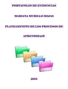 Portafolio Mariana Murillo Rojas
