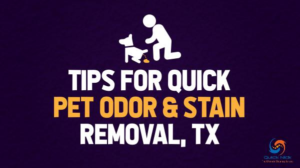 Quick Pet Odor & Stain Removal TX Tips for Quick Pet Odor & Stain Removal, TX