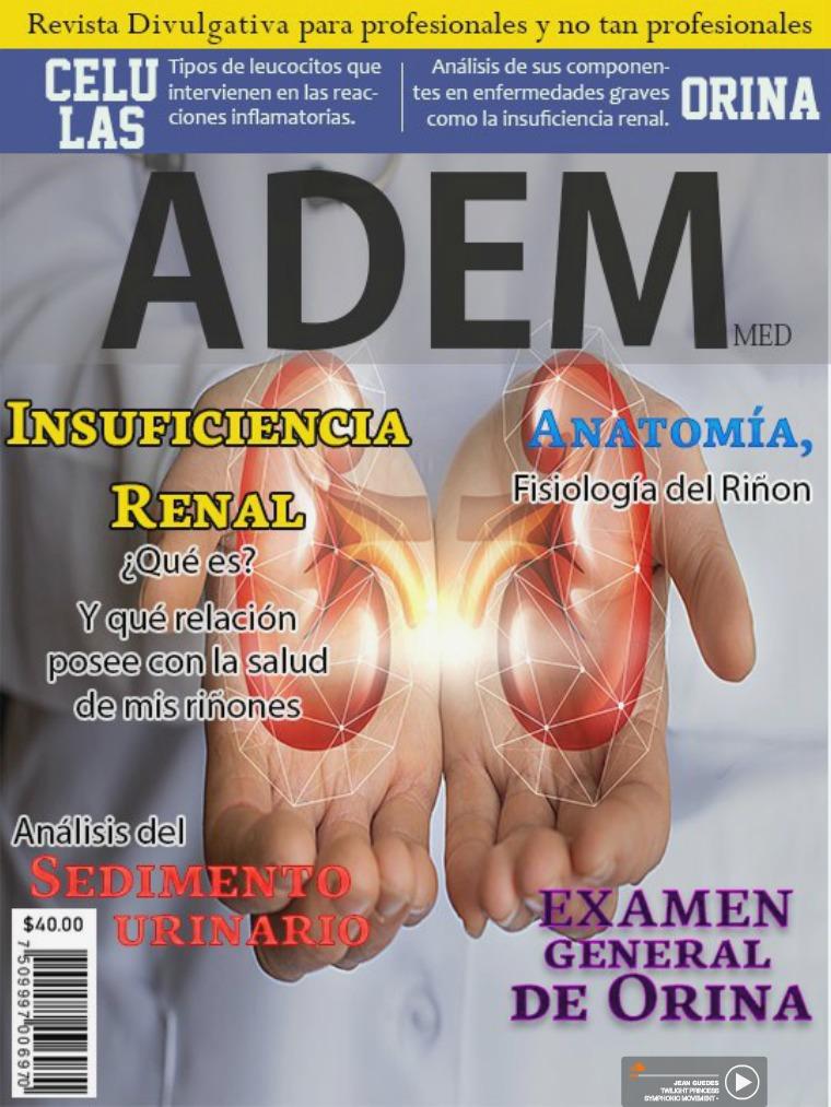 ADEM: Insuficiencia Renal Mayo 2019.
