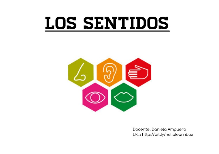 """""""Los sentidos"""", Ciencias Naturales, 1°B, 1Unidad- Daniela Ampuero Los sentidos Ciencias Naturales - 1°B, 1Unidad"""