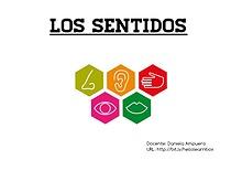 """""""Los sentidos"""", Ciencias Naturales, 1°B, 1Unidad- Daniela Ampuero"""