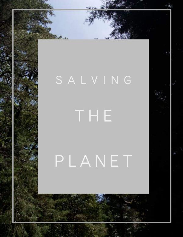 Proyecto Final Salving the planet