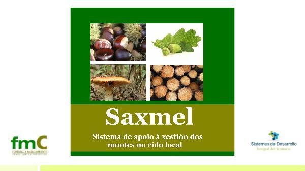 SAXMEL1