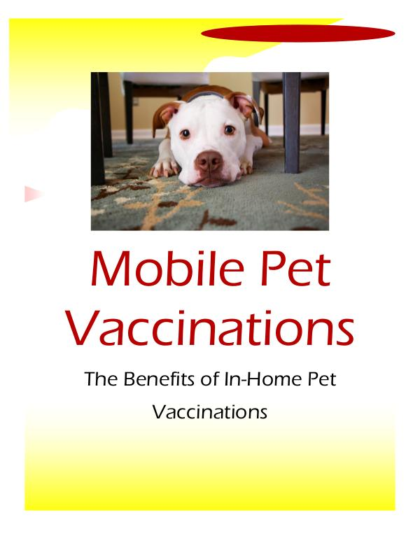My first work mobile vet clinic | Joomag Newsstand