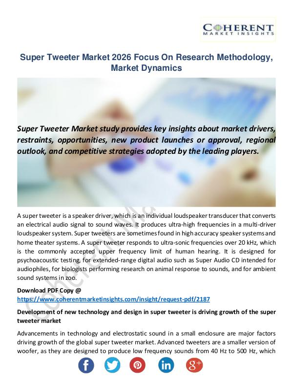 Super Tweeter Market