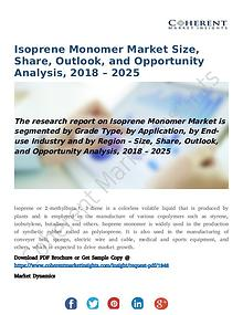 Isoprene Monomer Market Size, Share, Outlook, and Opportunity Analysi