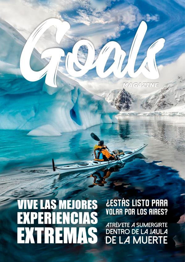 Goals Mayo 2019