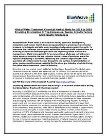 Water Treatment Chemical Market Outlook 2025