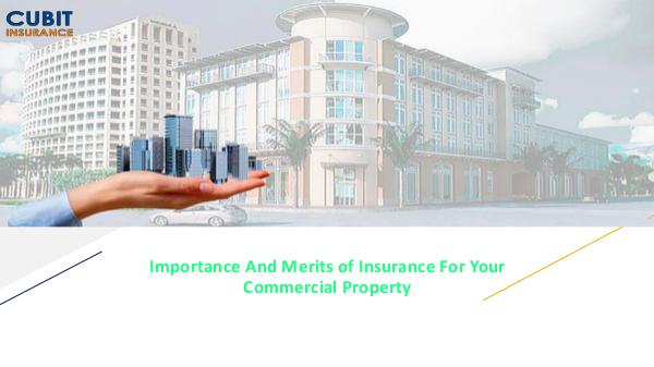 Importance And Merits of Insurance For Your Commercial Property Importance And Merits of Insurance For Your Commer