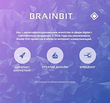 Brainbit's Services Explanation