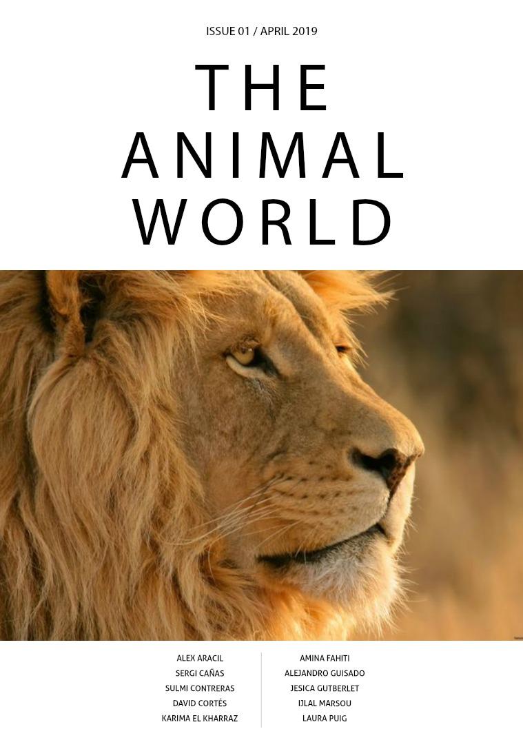 Animal World 1
