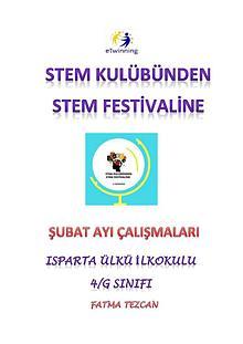 STEM KULÜBÜNDEN STEM FESTİVALİNE - ŞUBAT ÇALIŞMASI