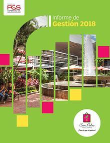 Informe Centro Comercial San Pedro Plaza Comercial