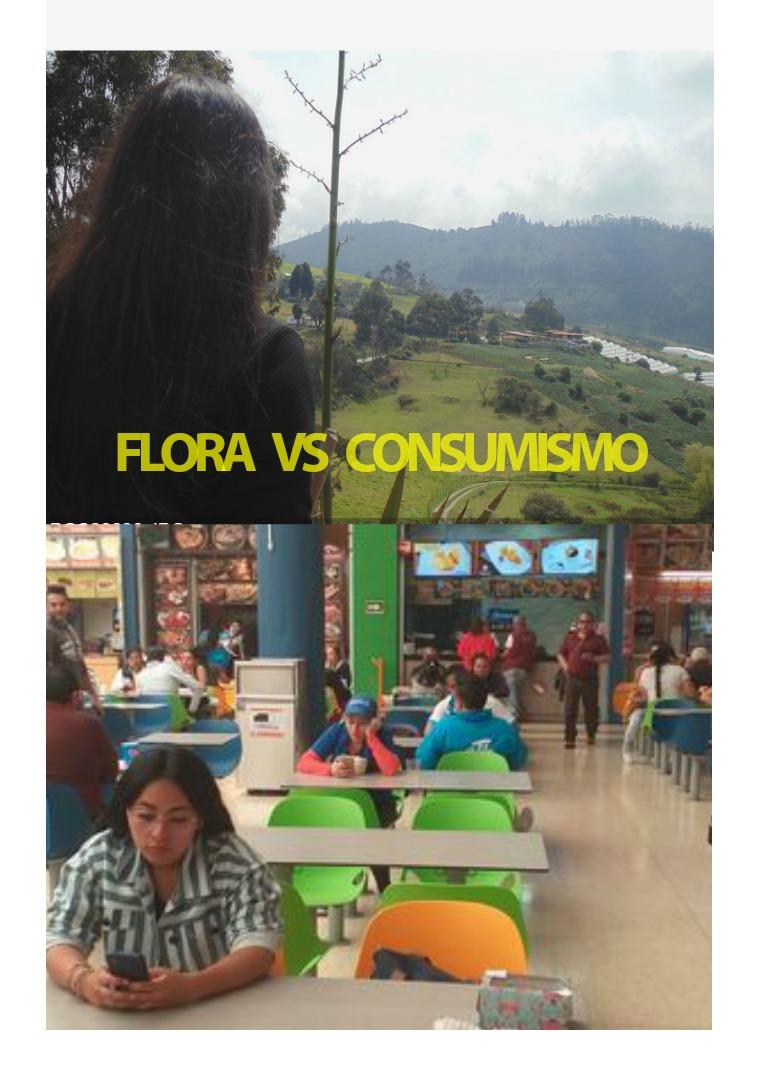 FLORA VS CONSUMISMO 1