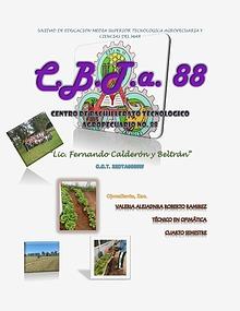 CBTA88