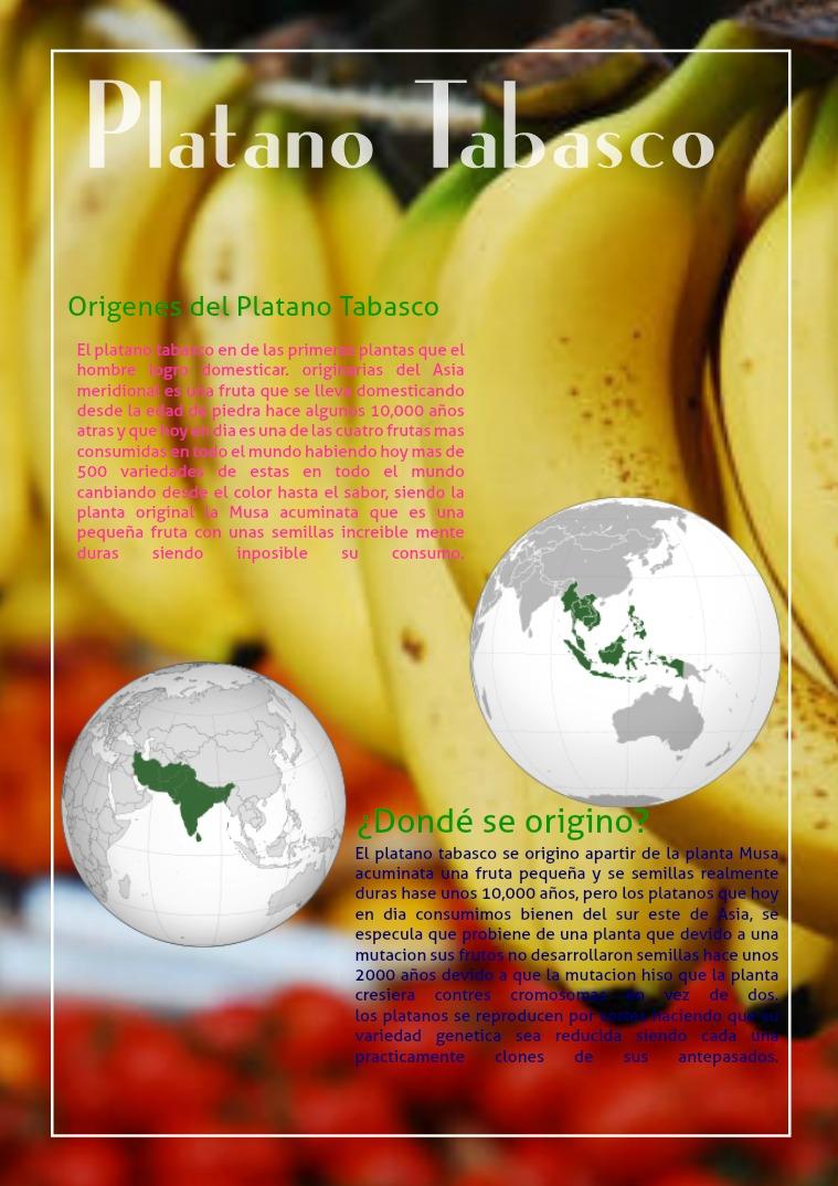 Revista Electrónica de Biología Revista Electrónica de biología