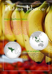 Revista Electrónica de Biología