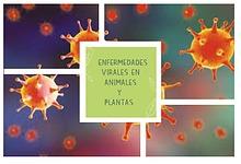 RECONOCIMIENTO DE ENFERMEDADES VIRALES EN ANIMALES Y PLANTAS