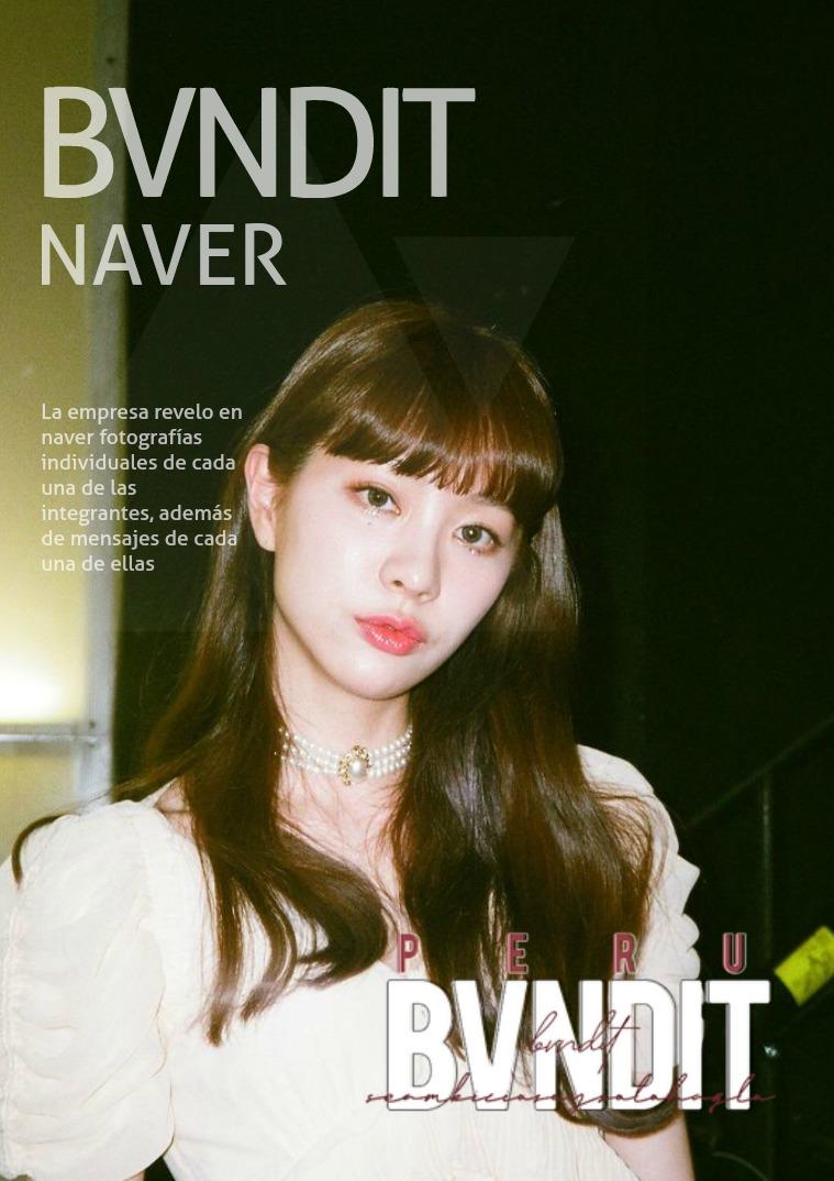 BVNDIT   Naver 01