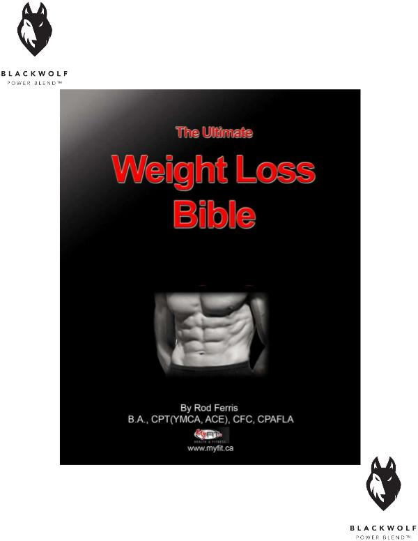 The Ultimate Weight Loss Bible PDF eBook Free Download Full Guide to Losing Weight Permanently eBook PDF