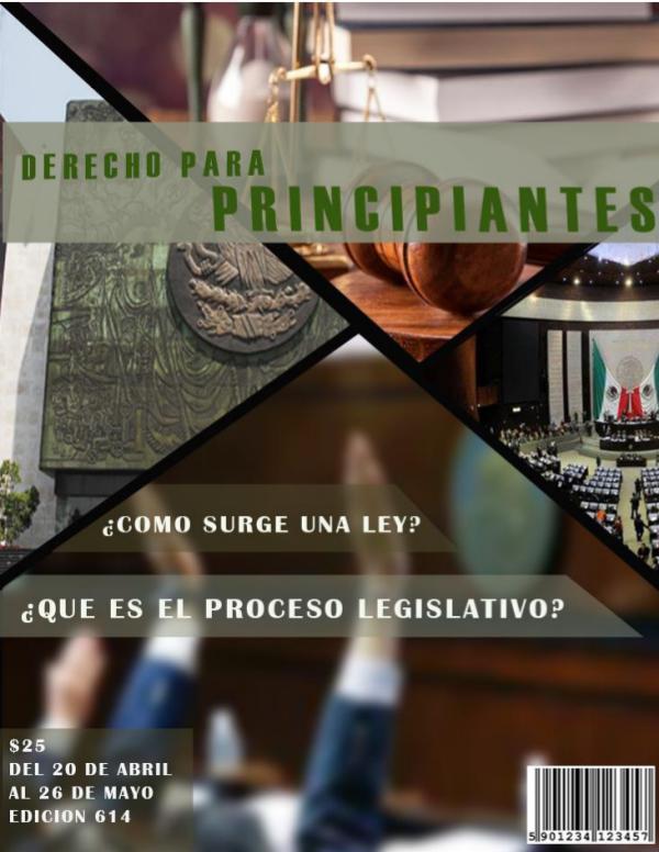 DERECHO PARA PRINCIPIANTES DERECHO PARA PRINCIPIANTES